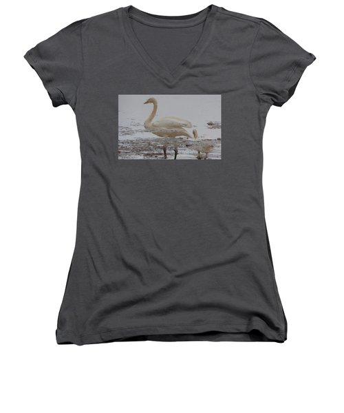 Trumpeter Swan Reflection Women's V-Neck T-Shirt (Junior Cut) by Karen Molenaar Terrell