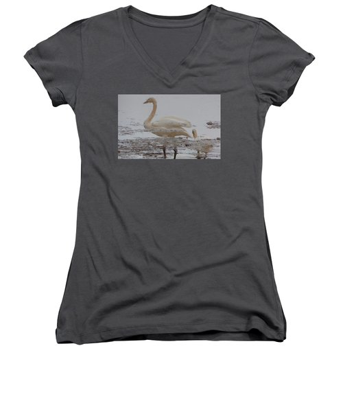 Trumpeter Swan Reflection Women's V-Neck (Athletic Fit)