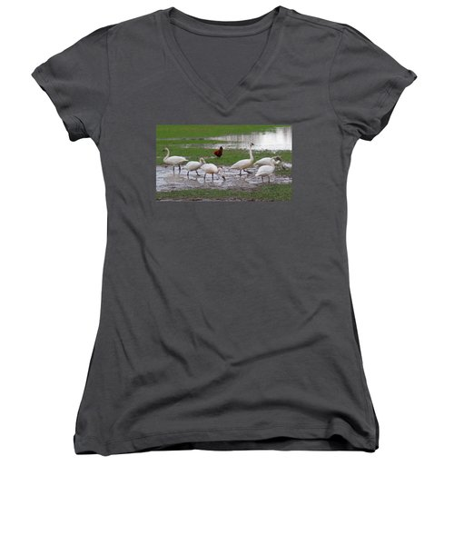 Trumpeter Swans And Rooster Women's V-Neck (Athletic Fit)