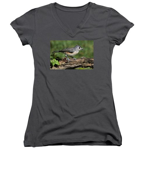 Tufted Titmouse On Tree Branch Women's V-Neck