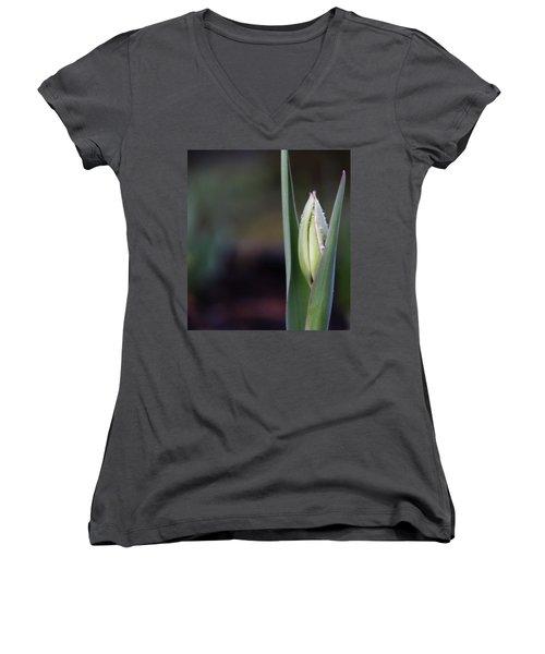 Tulip Bud Women's V-Neck T-Shirt (Junior Cut) by Katie Wing Vigil