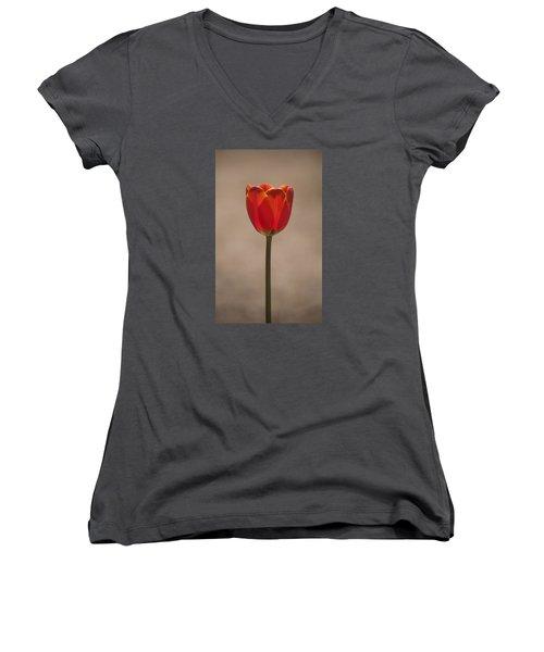 Tulip En Fuego Women's V-Neck T-Shirt (Junior Cut) by Morris  McClung