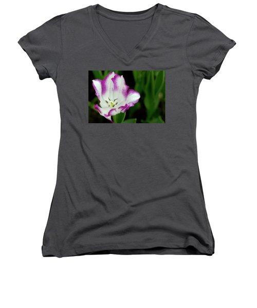 Tulip Flower Women's V-Neck