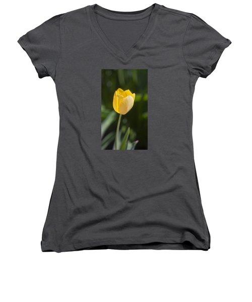 Tulip Portrait Women's V-Neck T-Shirt (Junior Cut) by Morris  McClung