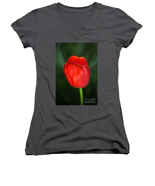 Tulip Red With A Hint Of Yellow Women's V-Neck