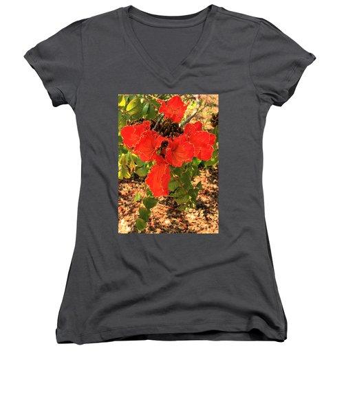 Tulip Tree Flowers Women's V-Neck