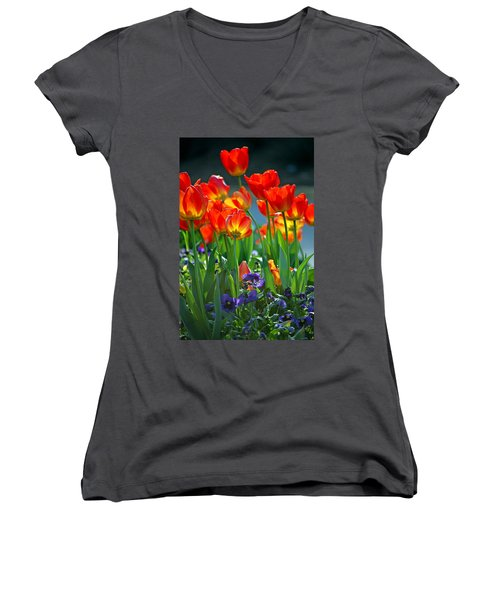Tulips Women's V-Neck T-Shirt (Junior Cut) by Robert Meanor