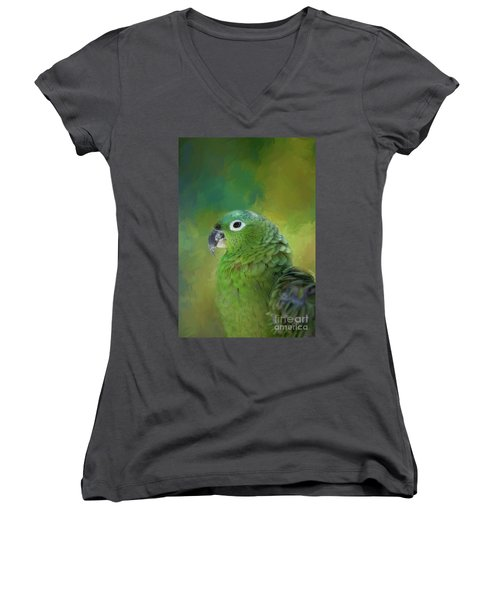 Turquoise-fronted Amazon Women's V-Neck T-Shirt