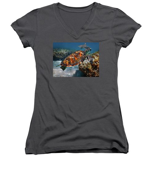 Women's V-Neck T-Shirt (Junior Cut) featuring the photograph Turtle And Shark Swimming At Ocean Reef Park On Singer Island Florida by Justin Kelefas