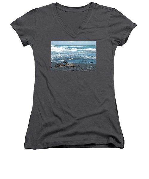 Turtles On Black Sand Beach Women's V-Neck T-Shirt