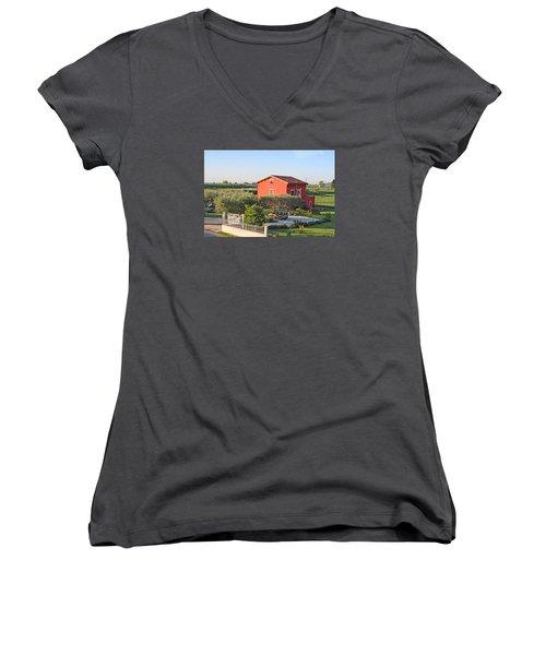 Tuscan Home Women's V-Neck T-Shirt (Junior Cut) by Allan Levin
