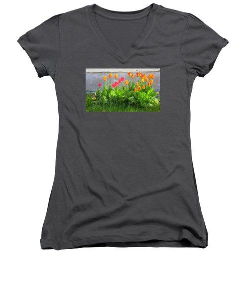 Twenty-five Tulips Women's V-Neck T-Shirt
