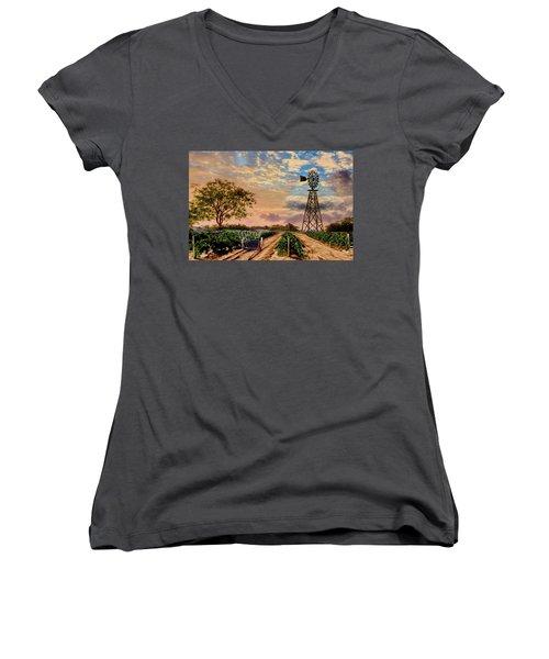 Twilight At The Vineyard Women's V-Neck T-Shirt