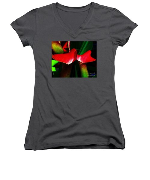 Women's V-Neck T-Shirt (Junior Cut) featuring the photograph Twins by Elfriede Fulda
