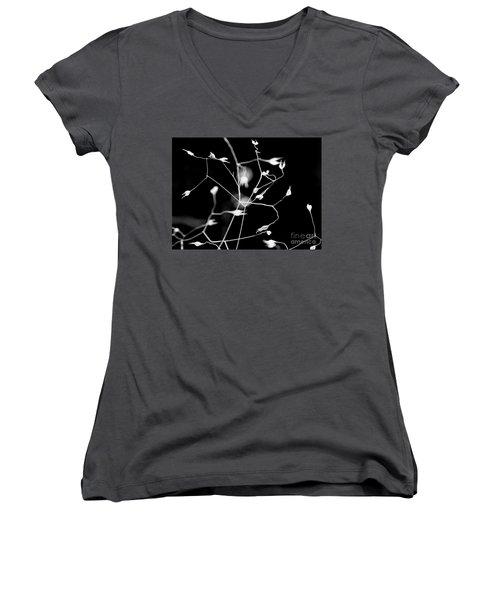 Twittering Seed Pods Bw Women's V-Neck T-Shirt