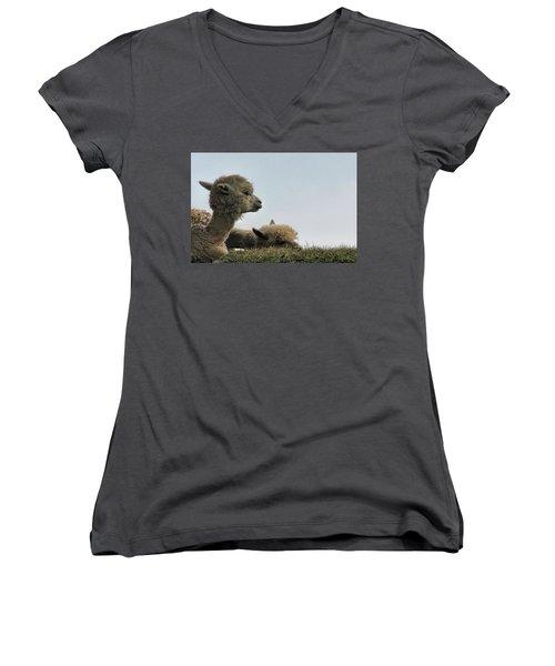 Two Alpaca Women's V-Neck T-Shirt (Junior Cut) by Pat Cook