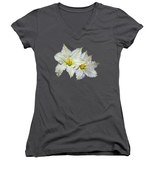 Two Clematis Flowers On Purple Women's V-Neck T-Shirt (Junior Cut) by Jane McIlroy