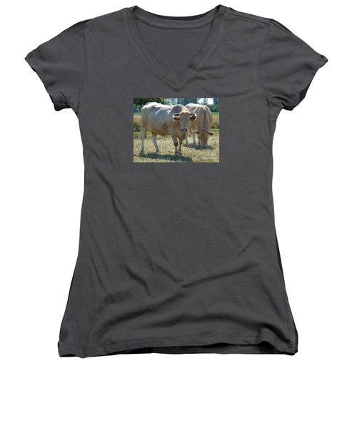 Women's V-Neck T-Shirt (Junior Cut) featuring the photograph Two Cows by Jean Bernard Roussilhe