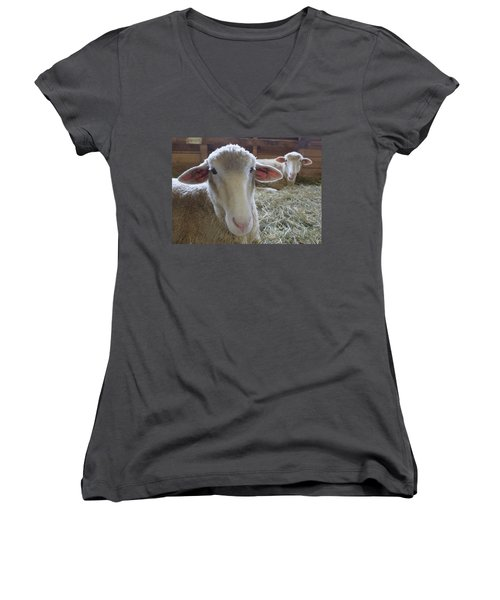 Two Funny Sheep In A Barn Women's V-Neck