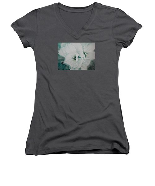Two Of A Kind Women's V-Neck T-Shirt (Junior Cut) by Carolyn Rosenberger