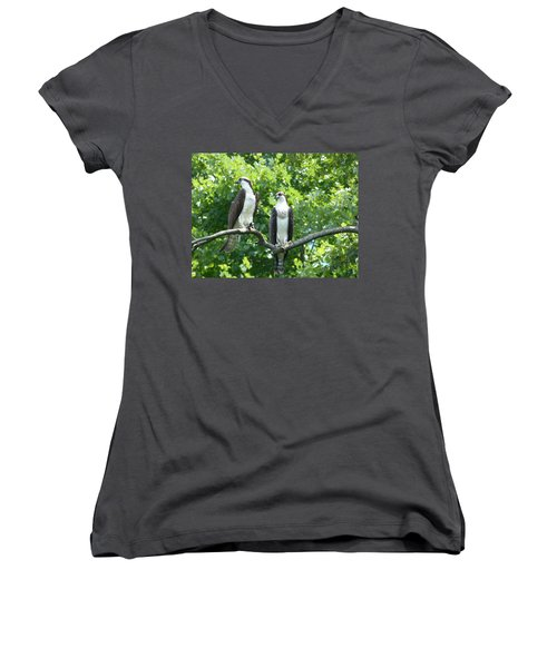 Women's V-Neck T-Shirt (Junior Cut) featuring the photograph Two On A Limb - Osprey by Donald C Morgan