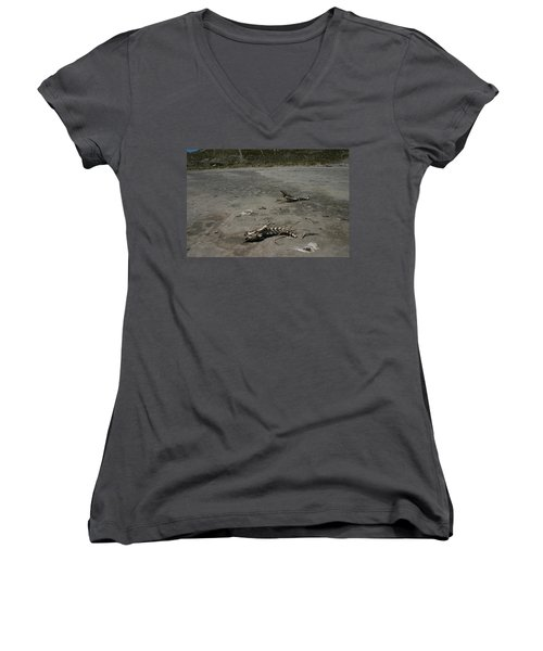 Women's V-Neck T-Shirt (Junior Cut) featuring the photograph Two Or 2 Halves Of 1 by Marie Neder
