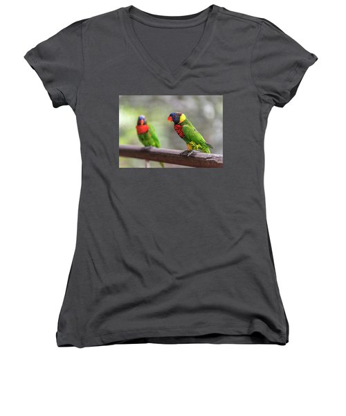 Two Parrots Women's V-Neck