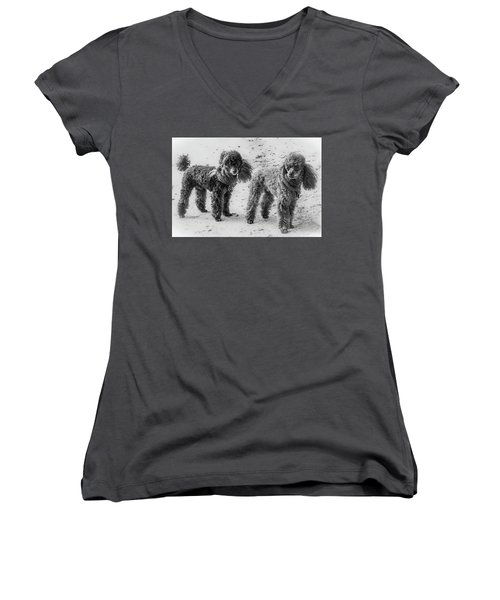 Two Toys B/w Women's V-Neck T-Shirt