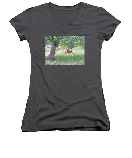 Under The Old Apple Tree Women's V-Neck (Athletic Fit)