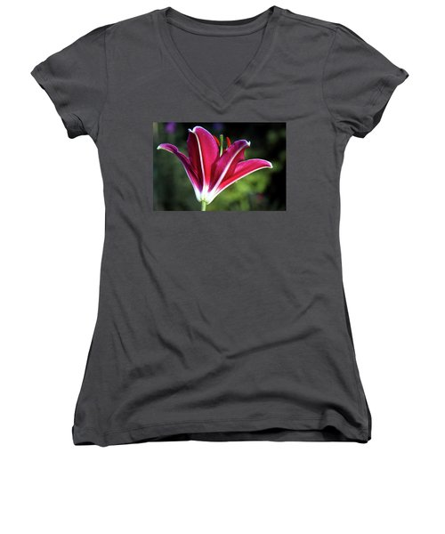 Underside Of Asiatic Tiger Lily 1653 H_2 Women's V-Neck T-Shirt