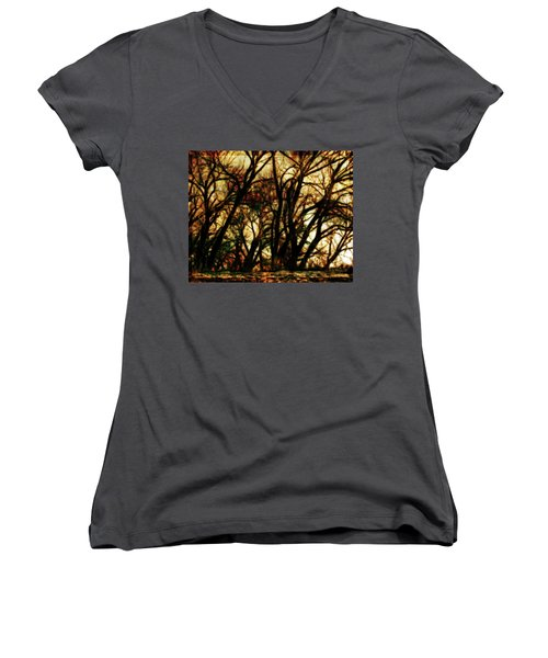 Unquenched Thirst Women's V-Neck T-Shirt