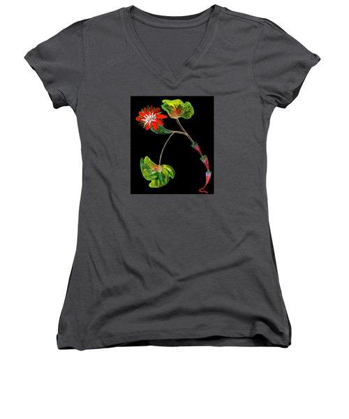 Unusual Women's V-Neck T-Shirt (Junior Cut) by R Kyllo