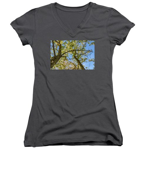 Up A Tree Women's V-Neck (Athletic Fit)