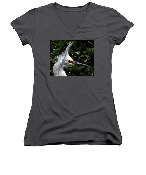 Up From A Nap Women's V-Neck T-Shirt