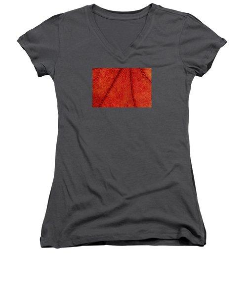 Vains Women's V-Neck T-Shirt (Junior Cut) by Chevy Fleet