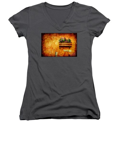 Vase Women's V-Neck T-Shirt