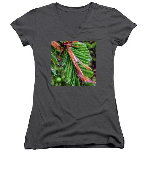Beech  Women's V-Neck T-Shirt (Junior Cut) by Majse Tange