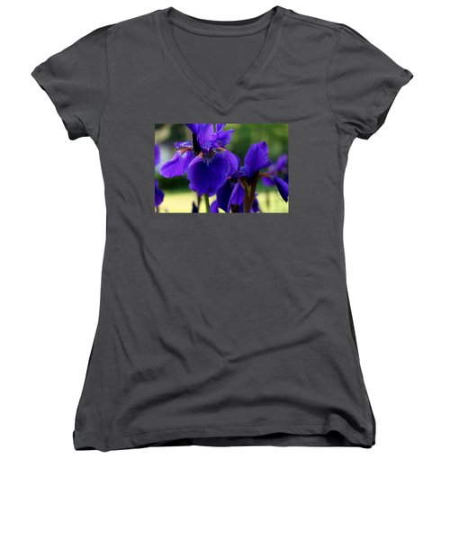 Women's V-Neck (Athletic Fit) featuring the photograph Velvet And Silk by Hanne Lore Koehler