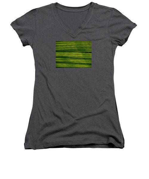 Venetian Blinds Women's V-Neck T-Shirt (Junior Cut) by Tim Good