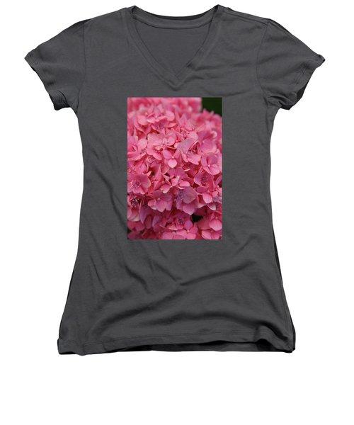 Very Pink Hydrangea Blossoms 2578 H_2 Women's V-Neck T-Shirt