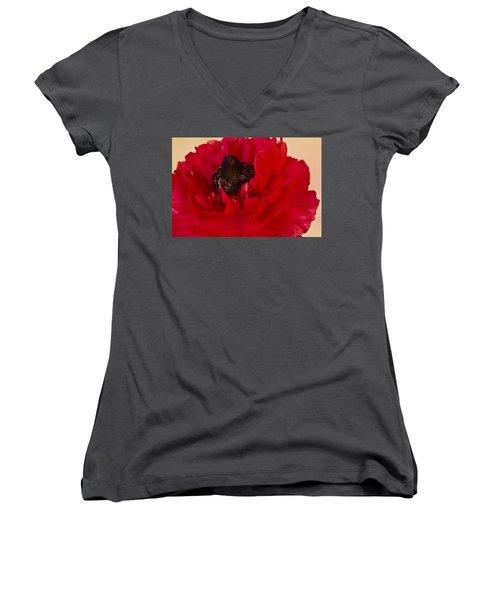 Vibrant Petals Women's V-Neck T-Shirt (Junior Cut) by Sandra Foster