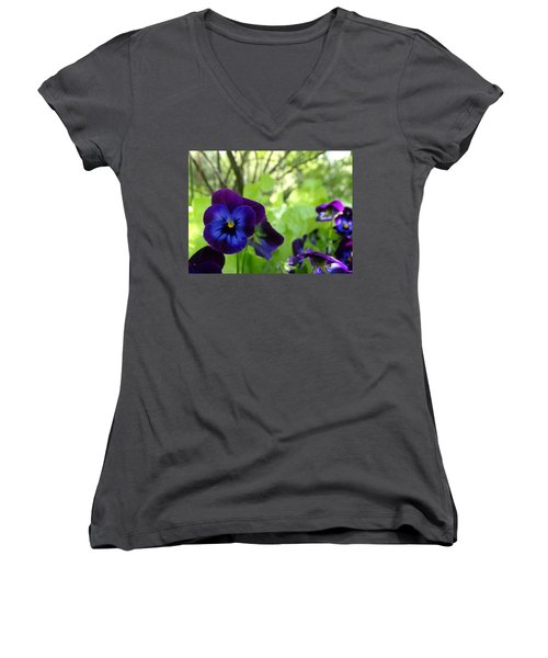 Vibrant Violets In Purple Women's V-Neck T-Shirt (Junior Cut) by Rebecca Overton