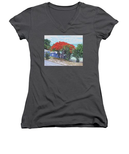 View From Hill Street Women's V-Neck