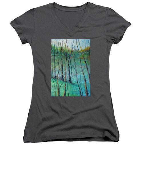 View Of Nature's Canvas Women's V-Neck T-Shirt (Junior Cut) by Robin Miller-Bookhout