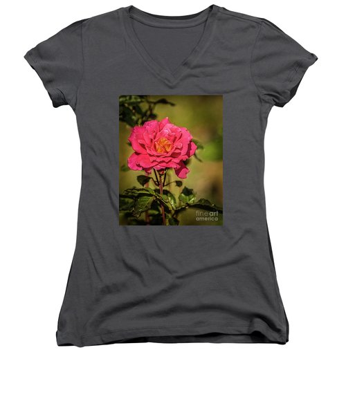 Vignetted  Rose Women's V-Neck T-Shirt (Junior Cut) by Robert Bales