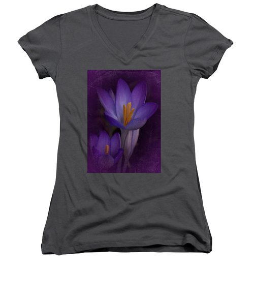 Vintage Crocus 2017 Women's V-Neck T-Shirt