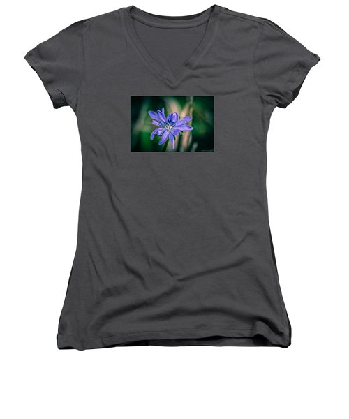 Women's V-Neck T-Shirt featuring the photograph Violet by Michaela Preston