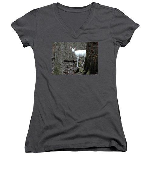 Women's V-Neck T-Shirt (Junior Cut) featuring the photograph Vision Quest White Deer by LeeAnn McLaneGoetz McLaneGoetzStudioLLCcom