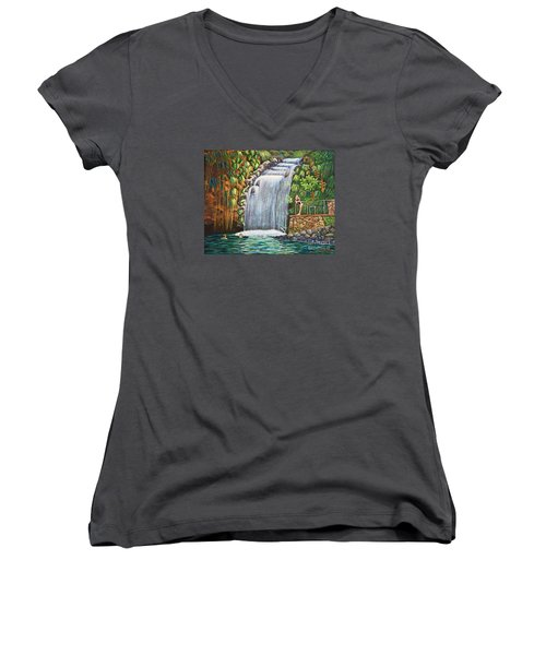 Visitors To The Falls Women's V-Neck T-Shirt (Junior Cut) by Laura Forde
