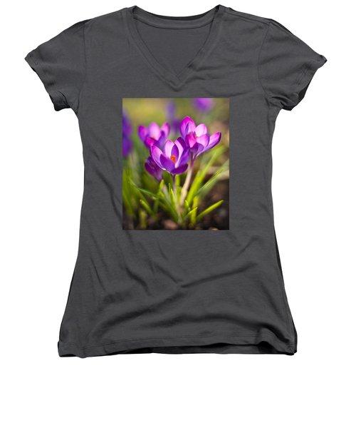 Vivid Petals Women's V-Neck T-Shirt